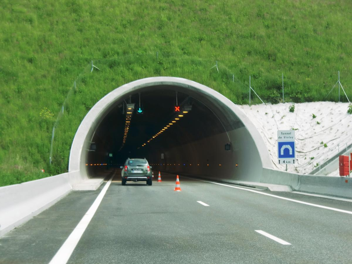 Tunnel Violay