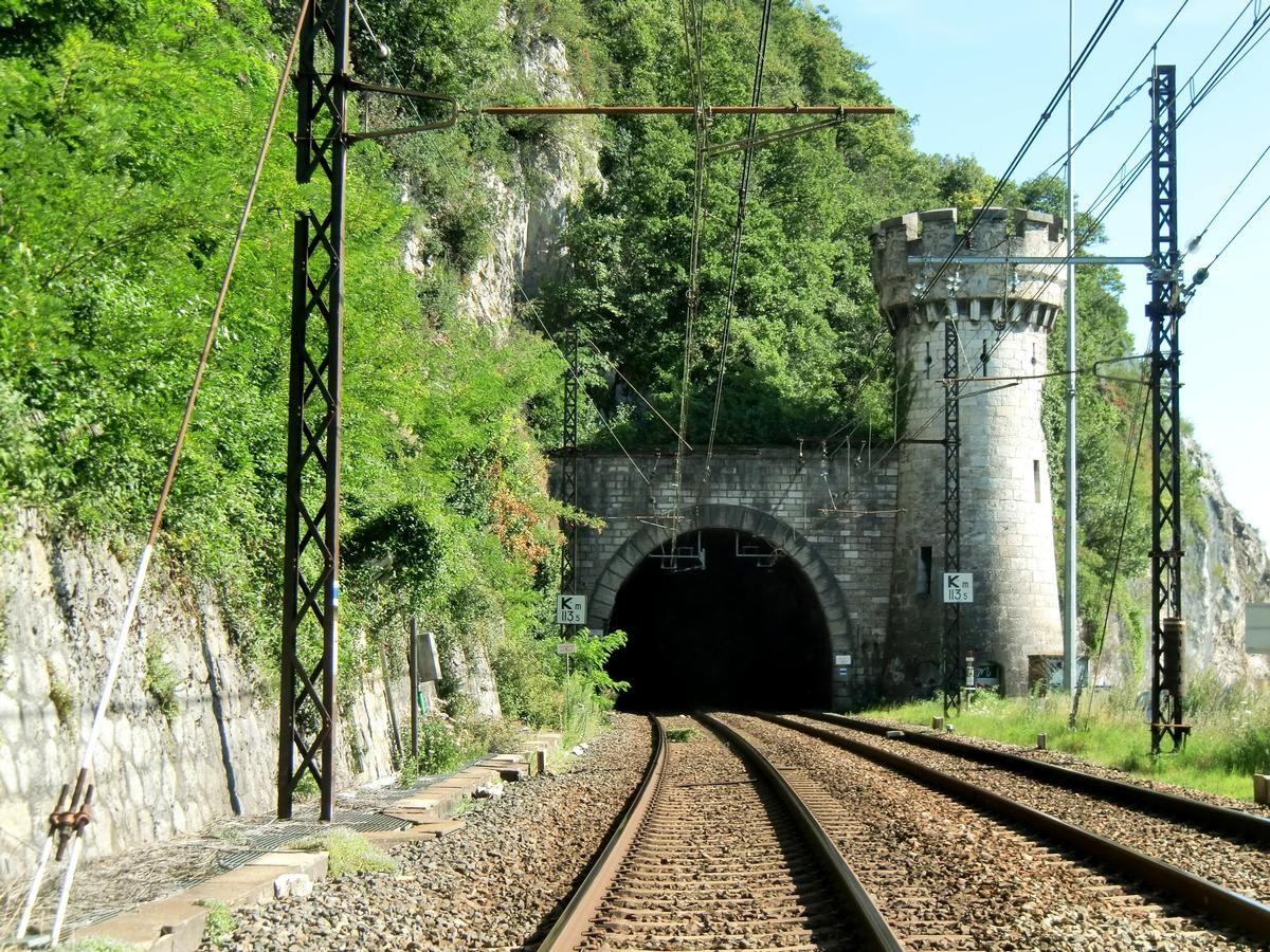 Tunnel Brison