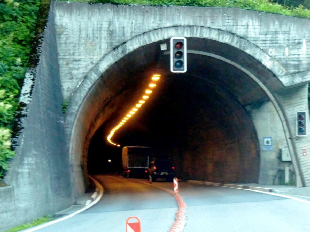 Image No. 290849 Passmal Tunnel eastern portal