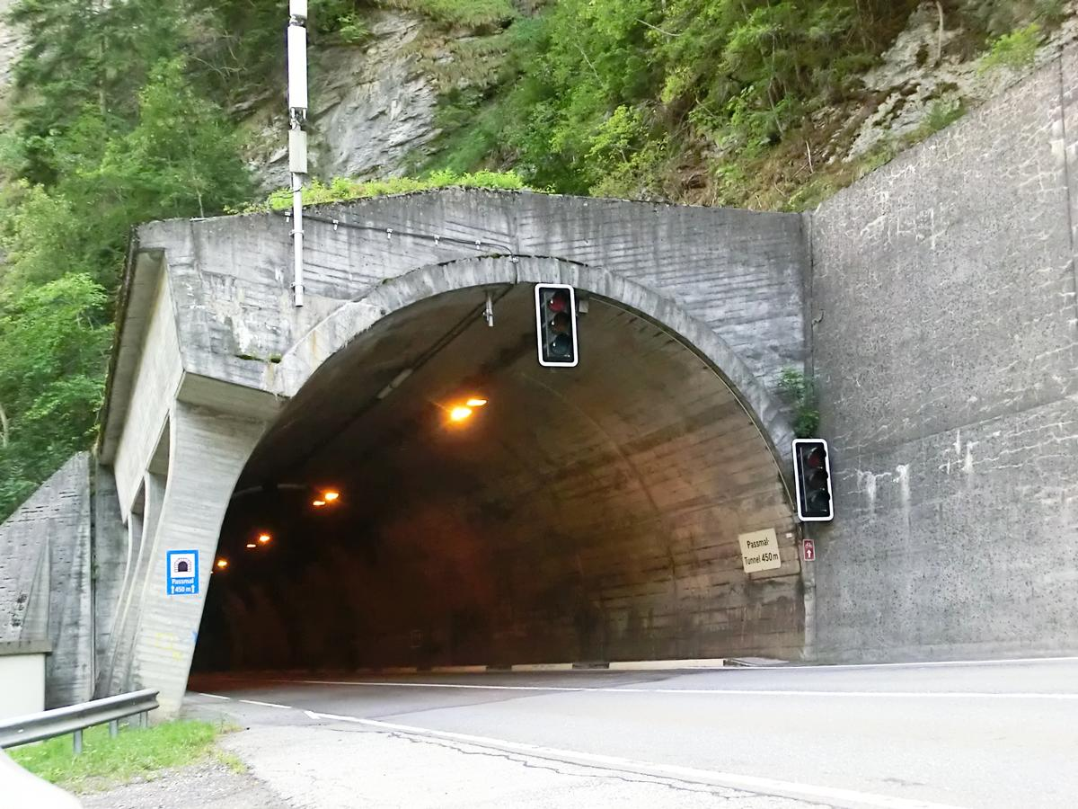 Image No. 309676 Passmal road Tunnel western portal