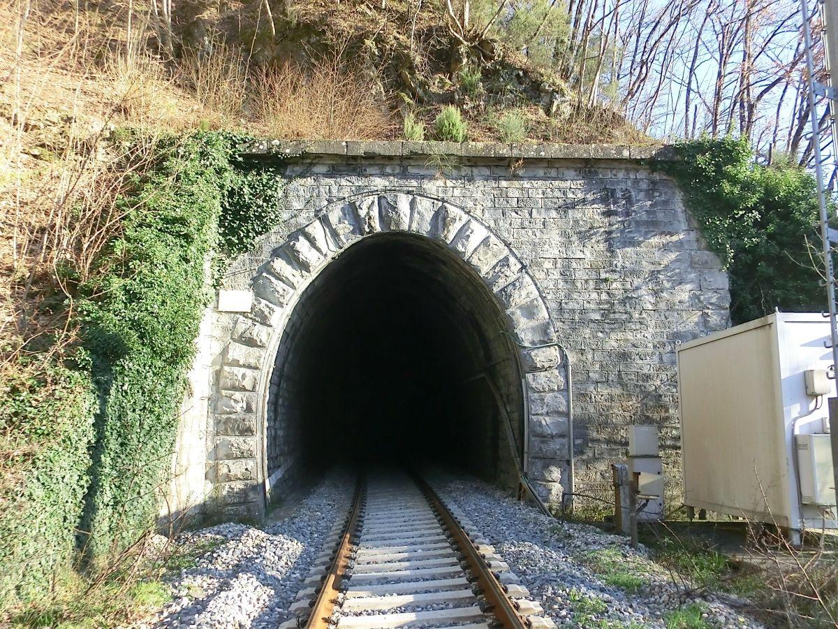 Túnel de Colombino