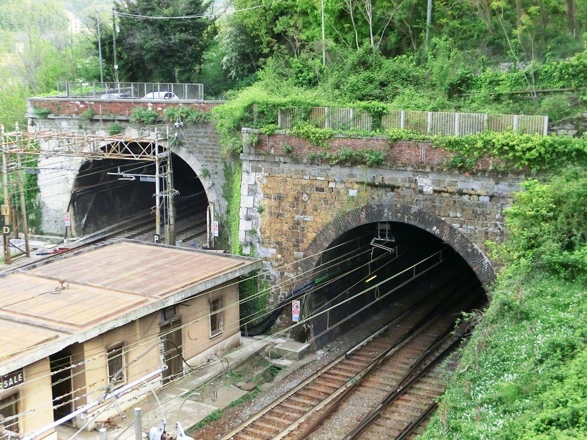 Facchini 2 (on the left) and Facchini 1 Tunnels northern portals