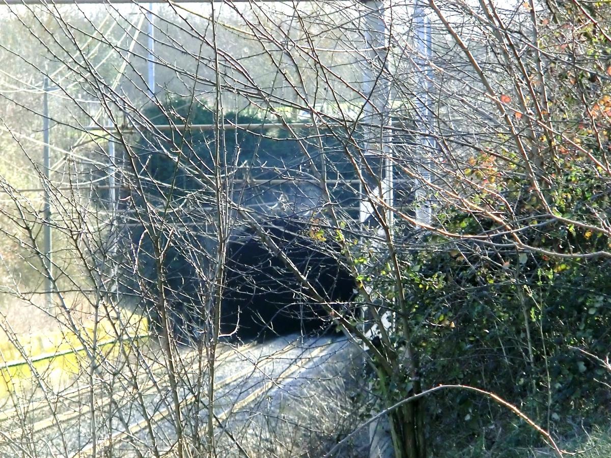 Migliarina Tunnel northern portal