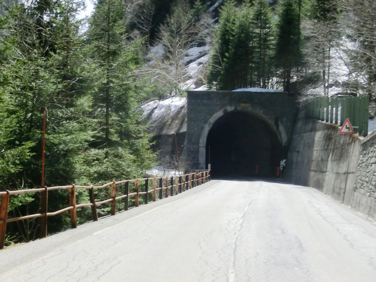 Vendula Tunnel northern portal