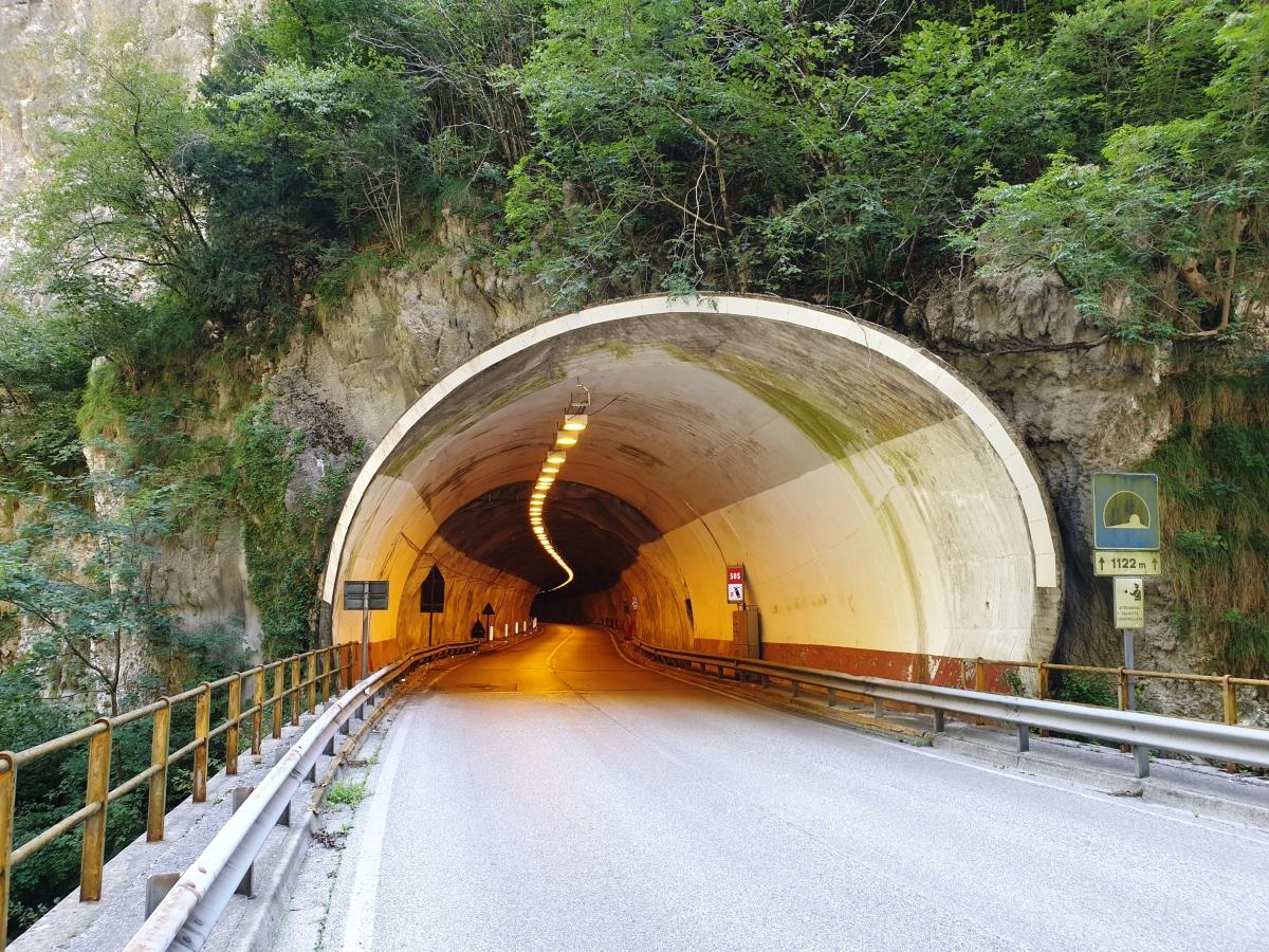 Tunnel de Bus del Colvera I