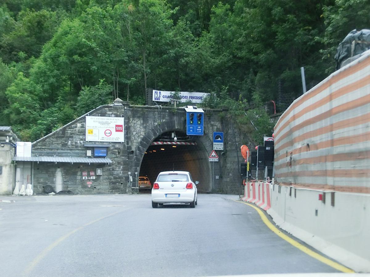 Tende Road Tunnel northern portal