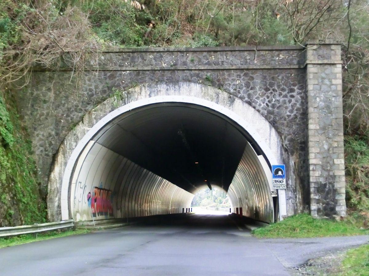 Tunnel Pineta