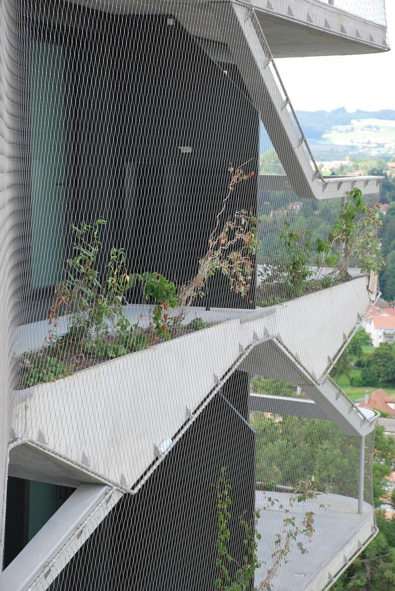 Nach und nach wächst dem Tower eine grüne Fassade mit bis zu 1.200 m² Fläche.