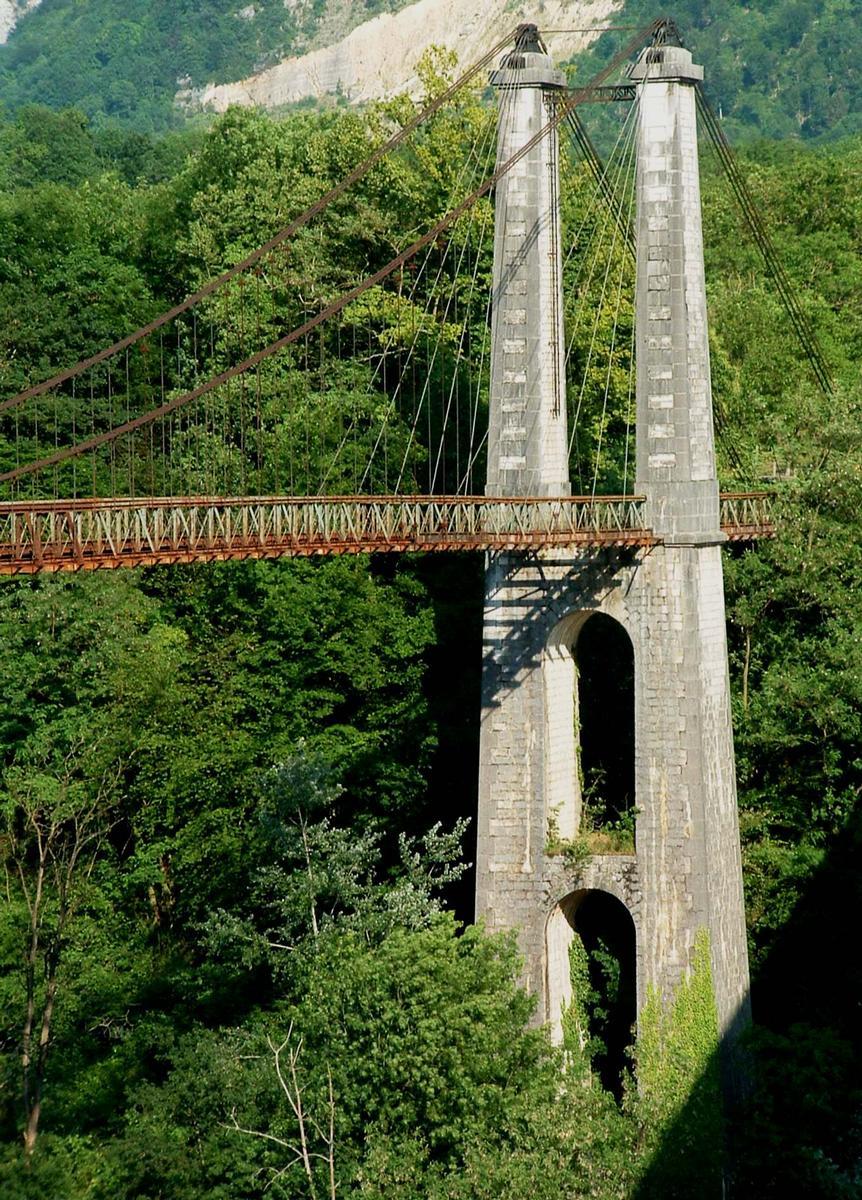 Trellins Suspension Bridge, Vinay