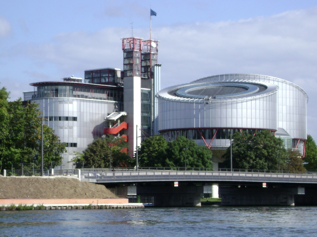 European Court of Human Rights (Strasbourg)